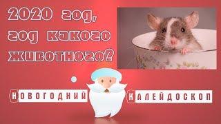 2020 год какого животного - год белой, металлической Крысы