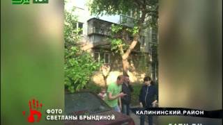 В дворе дома дерево упало на машины(, 2015-05-26T14:58:20.000Z)