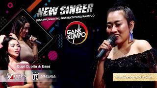 Tangis Bahagia - Gank Kumpo - Live New Singer 2019 Bebel Wonokerto