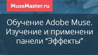 #28. MuseMaster.ru. Применение эффектов в Adobe Muse.