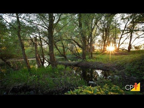 Clique e veja o vídeo Curso Técnicas Mecânicas de Conservação de Água e Solo - Linha em Gradiente - Cursos CPT
