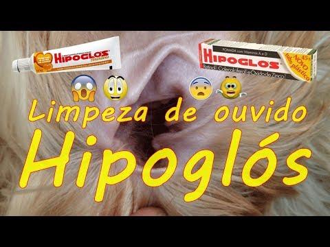 HIPOGLOS | Limpeza de ouvido de animais com HIPOGLOS #petcarol #torodepalpite