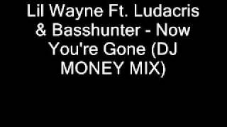 Lil Wayne Ft  Ludacris & Basshunter   Now You