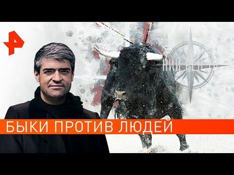 Быки против людей. НИИ РЕН ТВ (15.10.2019).