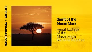 Spirit of The Masai Mara