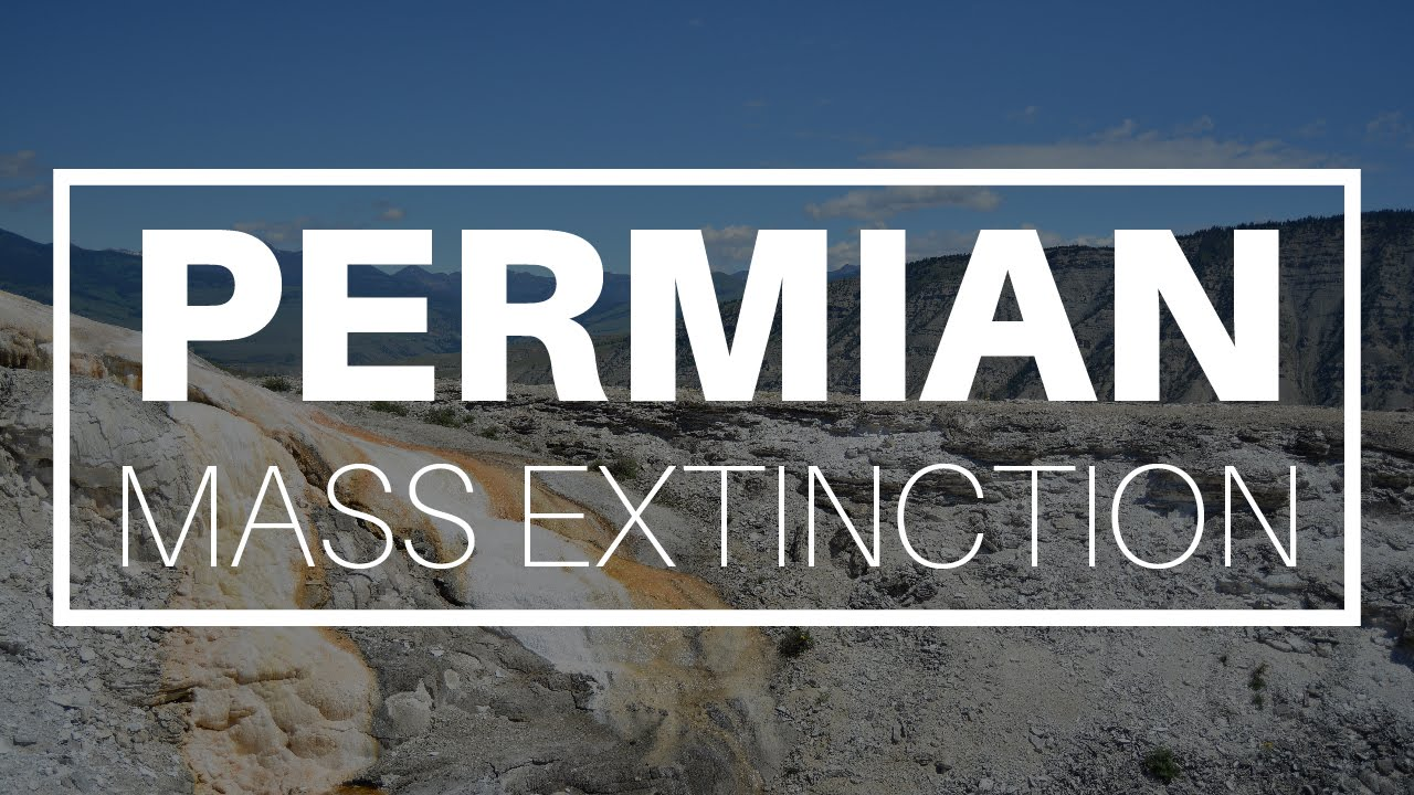 Image result for permian mass extinction