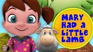 у Мэри был маленький ягненок | детские стишки | Mary Had A Little Lamb | Little Treehouse Russia