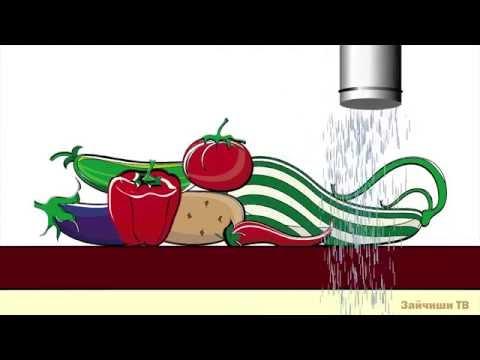 Как растут растения мультфильм