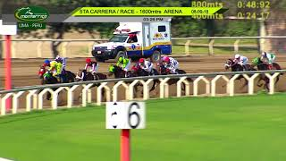 Vidéo de la course PMU MAIDEN 3 ANS