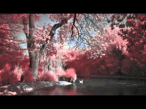 [HD] 'The River' Beautiful Chillstep Mix By Ni:12