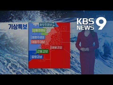 [날씨] 태풍 '타파' 영향으로 밤새 영동 강원 많은 비 / KBS뉴스(News)