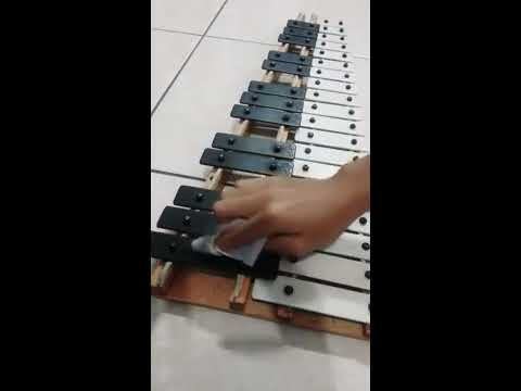 How to clean a Xylophone (The correct way)