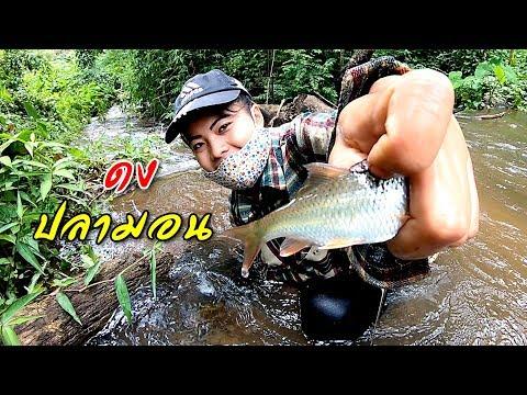ตามติดชีวิตชาวกะเหรี่ยง EP.8 ดงปลามอนไซส์ใหญ่กับแม่น้ำไหลแรงจะเป็นยังไงมาดูกัน!!!