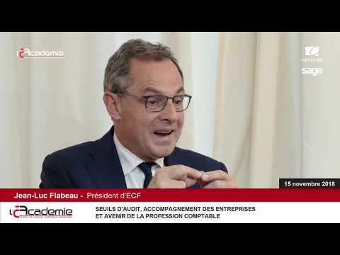 """Les Entretiens de l'Académie // Série """"Audit"""" : Jean-Luc Flabeau /ECF (4/8)"""