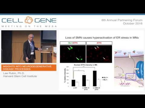 New Insights into Neurodegenerative Disease Processes - Lee Rubin, Harvard Stem Cell Institute