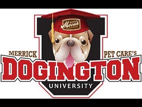 Merrick Pet Care's Dogington University - Dianne Sarasin