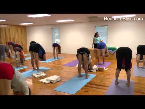 Adho Mukha Svanasana & Uttanasana  with Lois Steinberg, Certified Iyengar Yoga Teacher Advanced 2