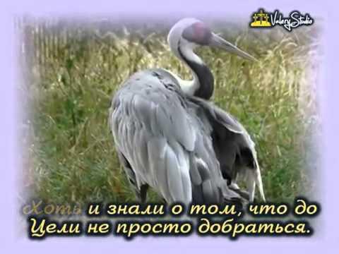 Как поехать на Афон? Паломничество на Афон из Санкт-Петербурга