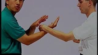 Single Sticking Hands - Dan Chi Sau