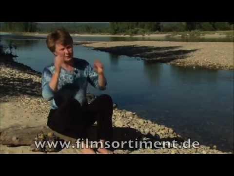 Bionik: NATÜRLICH GENIAL! BIOMIMIKRY DVDVorschau