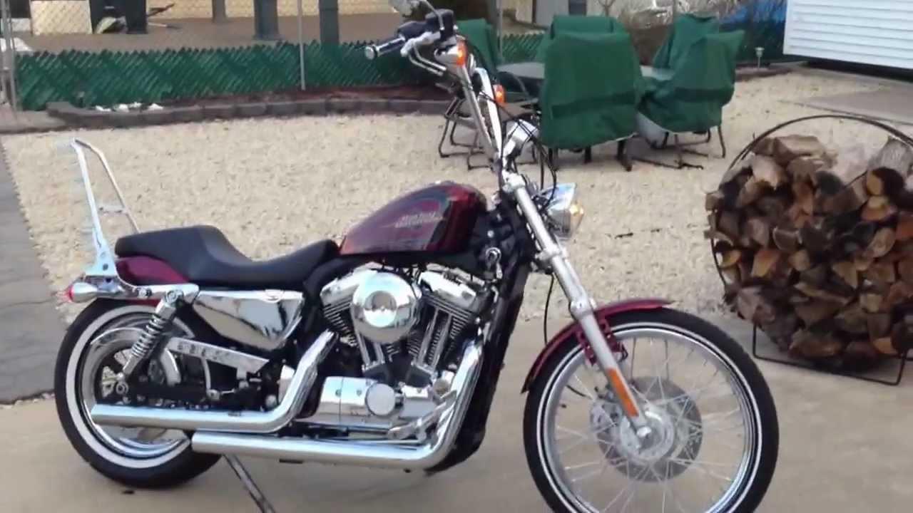 Sissy Bar Harley Davidson Sportster