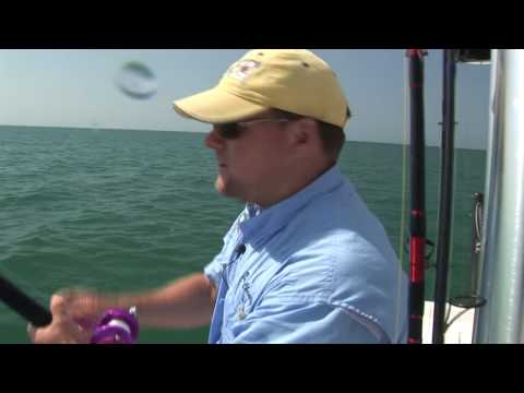 Sanibel, Ft. Myers, Cape Coral Shark Fishing Charters