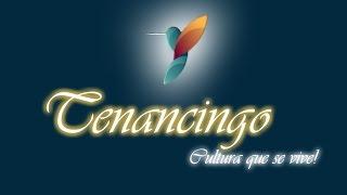 Carnaval Tenancingo Tlaxcala 2016. Día domingo-- primera parte.