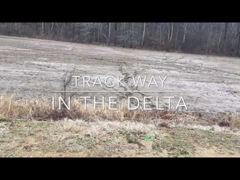 MBEST MBVD ( Delta Track way )