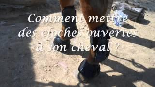 [Tuto n°1] Comment mettre des guêtres/protèges boulets et des cloches à son cheval ?