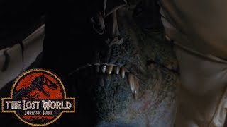 The Hidden Butterfly Effect in The Lost World: Jurassic Park - Subtext in Films