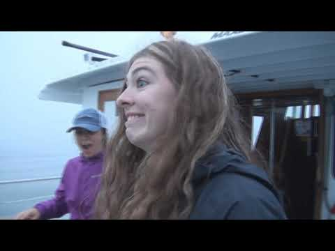Neah Bay Chinook And Coho Salmon - Windsong Charters