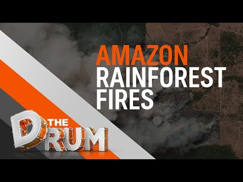 Amazon wildfires an