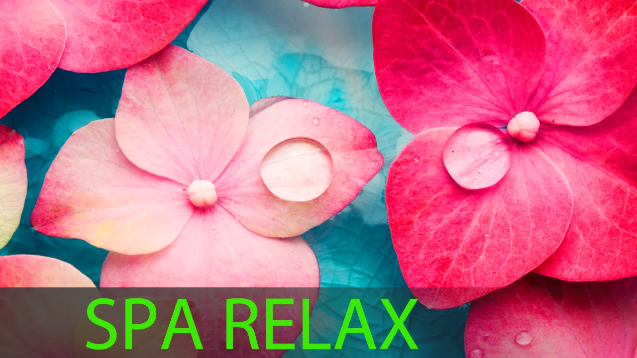 Super Relax Day Spa