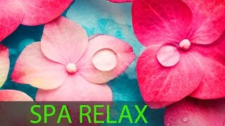 6 Hour Super Relaxing Spa Music: Meditation Mus...