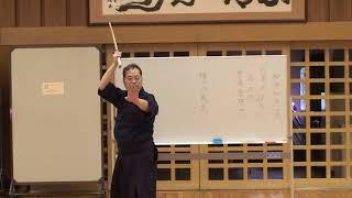 Shinto Muso Ryu 神道夢想流杖道特別稽古会