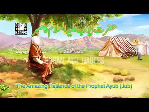 Hazrat Ayub alaihis Salam ke Sabar Ka Waqia Sainath Par Main Aur Mere Liye Dawa Jarur kare