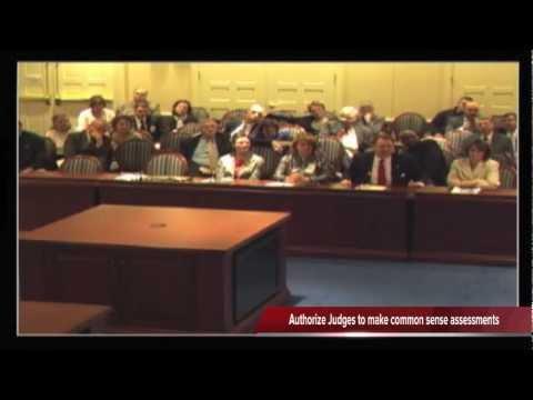 Voter ID Bill Hearing - Delegate Kipke - Maryland House of Delegates