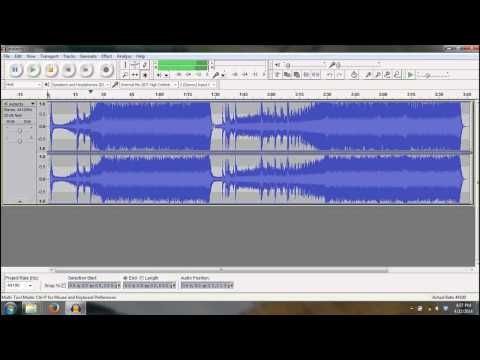 Audacity Imported into Audacity as Raw Data