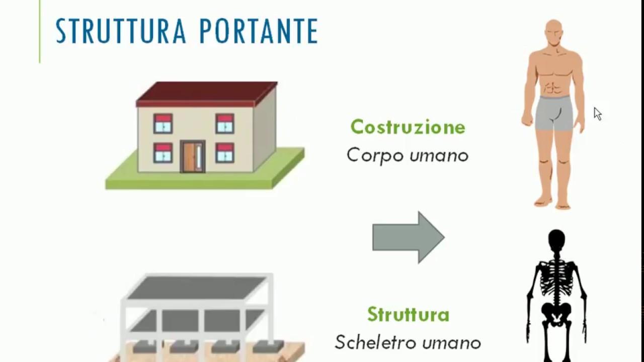 Abitazione struttura portante classi 2 youtube for Tipi di abitazione