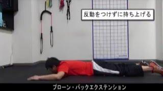 プローン・バックエクステンション|体幹トレーニング