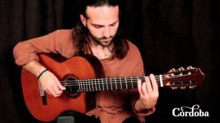Cordoba Guitars - C7-CE Cedar
