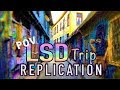 LSD Trip Simulation Replication [Accurate POV]