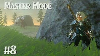 LYNEL FIGHT:  Zelda BotW MASTER MODE #8