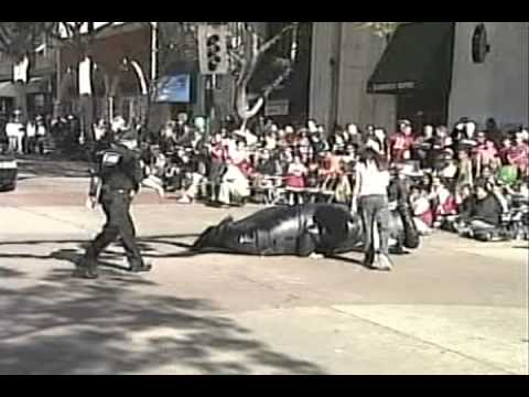 Download Police Officer falls down during Whittier Christmas parade 2006