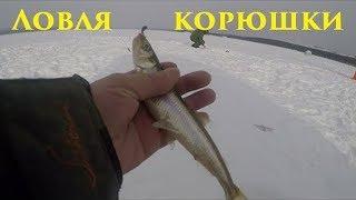 Зимняя рыбалка Ловля корюшки Winter fishing smelt FishingHD 2019
