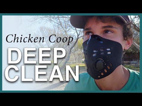 Chicken Coop Deep Clean