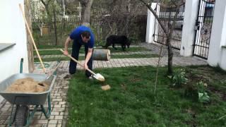 Как правильно посеять (восстановить) газон (траву) после зимы(Простой и дешёвый способ восстановить газон после зимы. Как легко и быстро отремонтировать газон. Как прави..., 2015-06-05T18:36:45.000Z)