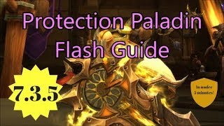 Protection Paladin Flash Guide for 7.3.5