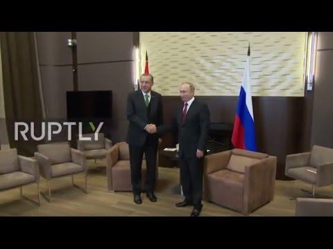 Russia: Putin and Erdogan hail bilateral relations in Sochi meeting