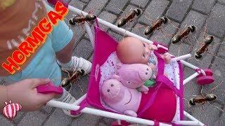 Invasión de hormigas en el paseo de Peppa Pig y Bebé Humano | Vídeos de Peppa Pig en español